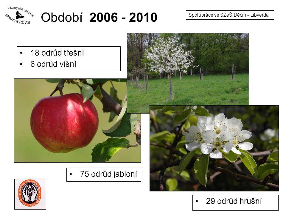 Období 2006 - 2010 18 odrůd třešní 6 odrůd višní 75 odrůd jabloní