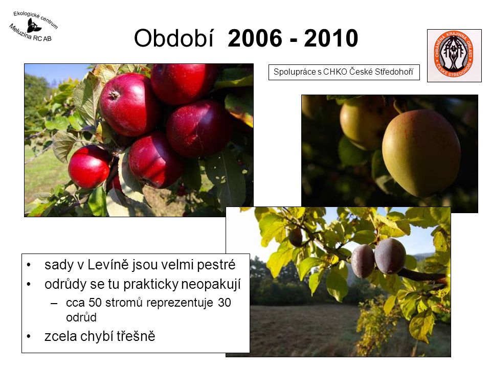 Období 2006 - 2010 sady v Levíně jsou velmi pestré