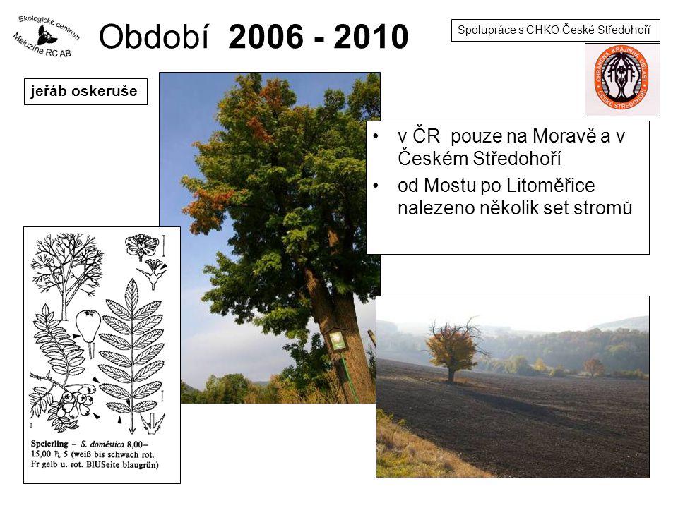 Období 2006 - 2010 v ČR pouze na Moravě a v Českém Středohoří