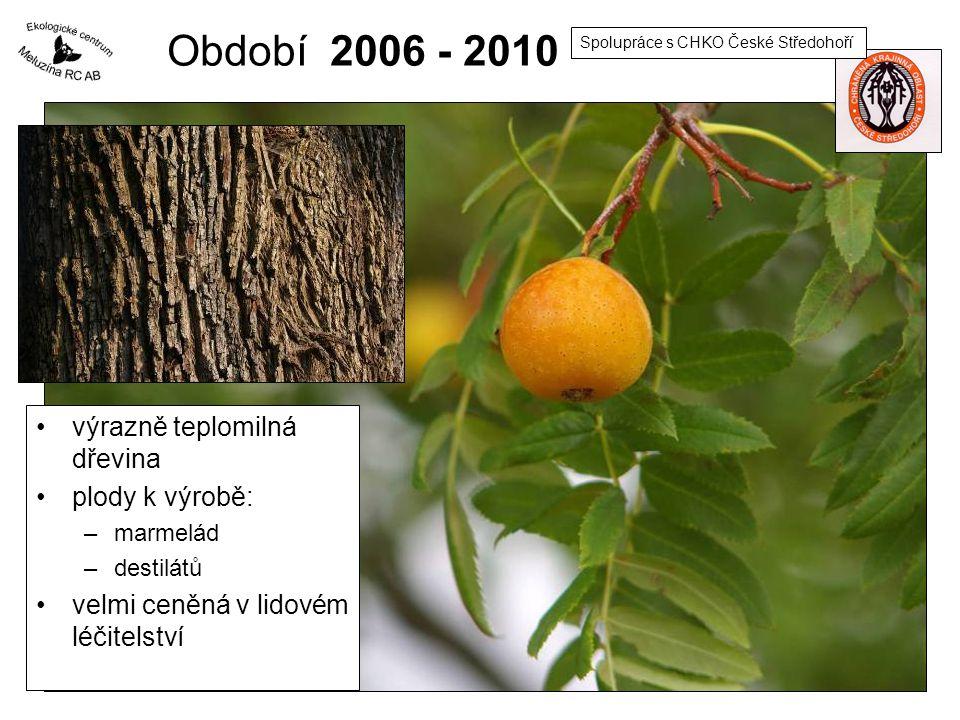 Období 2006 - 2010 výrazně teplomilná dřevina plody k výrobě: