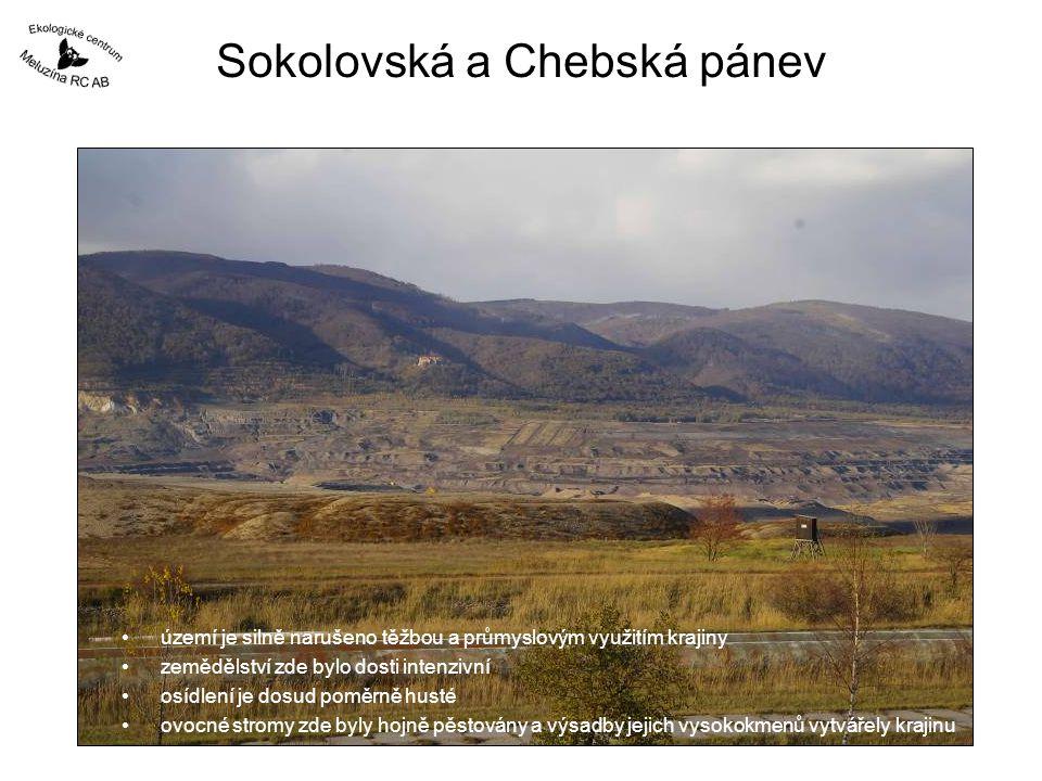 Sokolovská a Chebská pánev