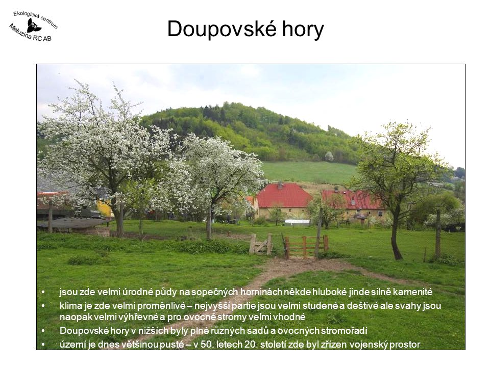 Doupovské hory jsou zde velmi úrodné půdy na sopečných horninách někde hluboké jinde silně kamenité.