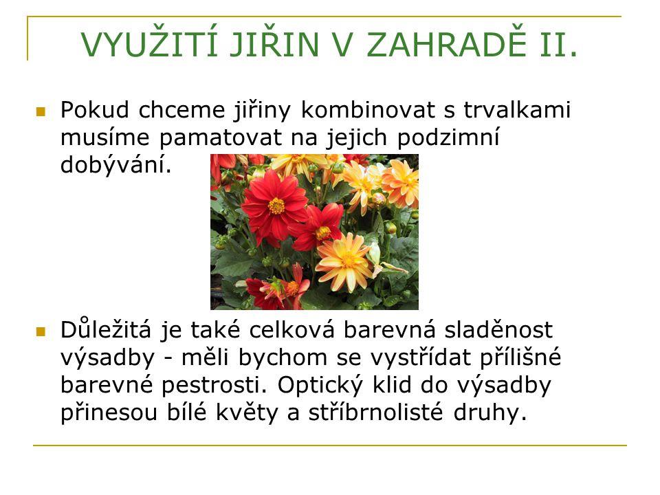 VYUŽITÍ JIŘIN V ZAHRADĚ II.
