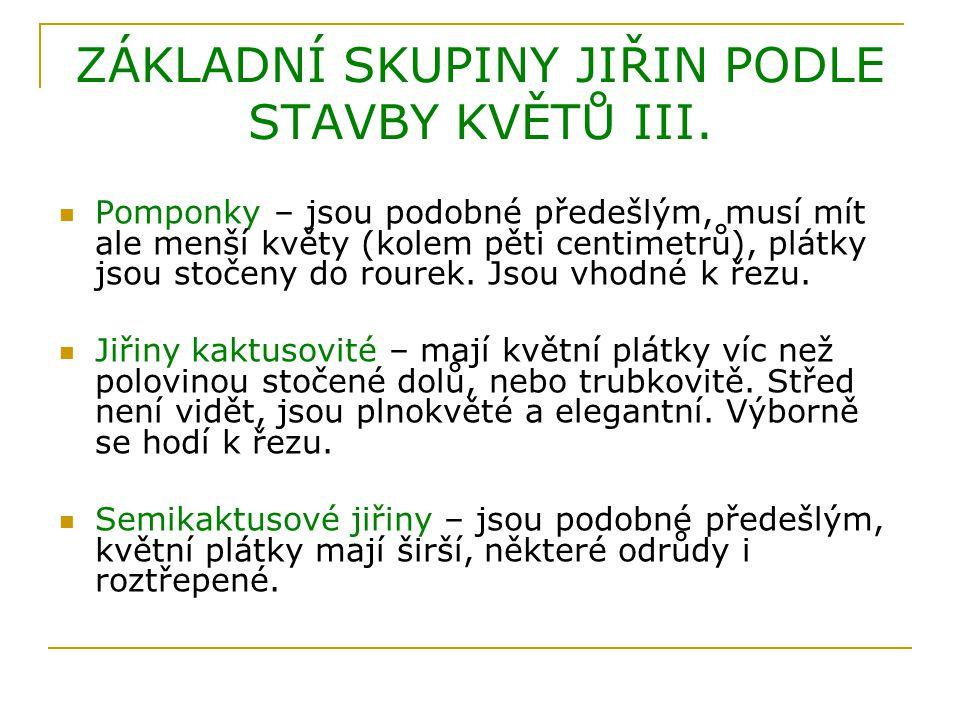 ZÁKLADNÍ SKUPINY JIŘIN PODLE STAVBY KVĚTŮ III.