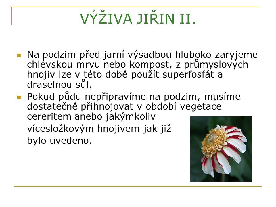 VÝŽIVA JIŘIN II.