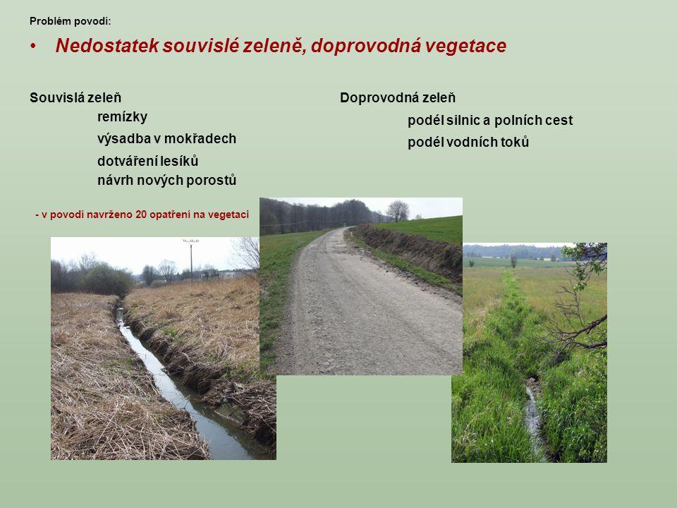 Nedostatek souvislé zeleně, doprovodná vegetace