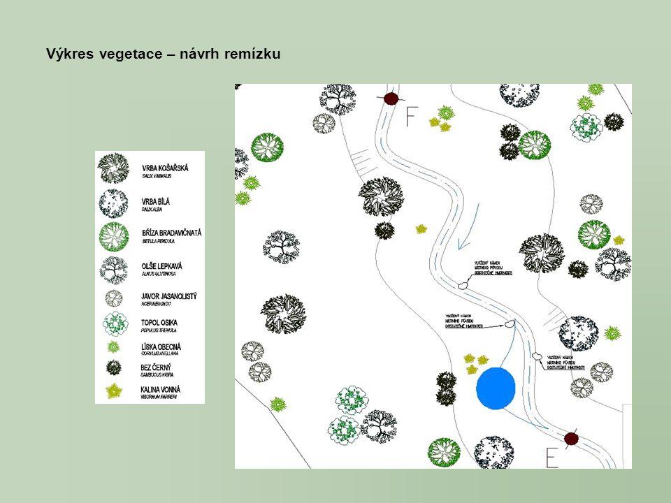 Výkres vegetace – návrh remízku