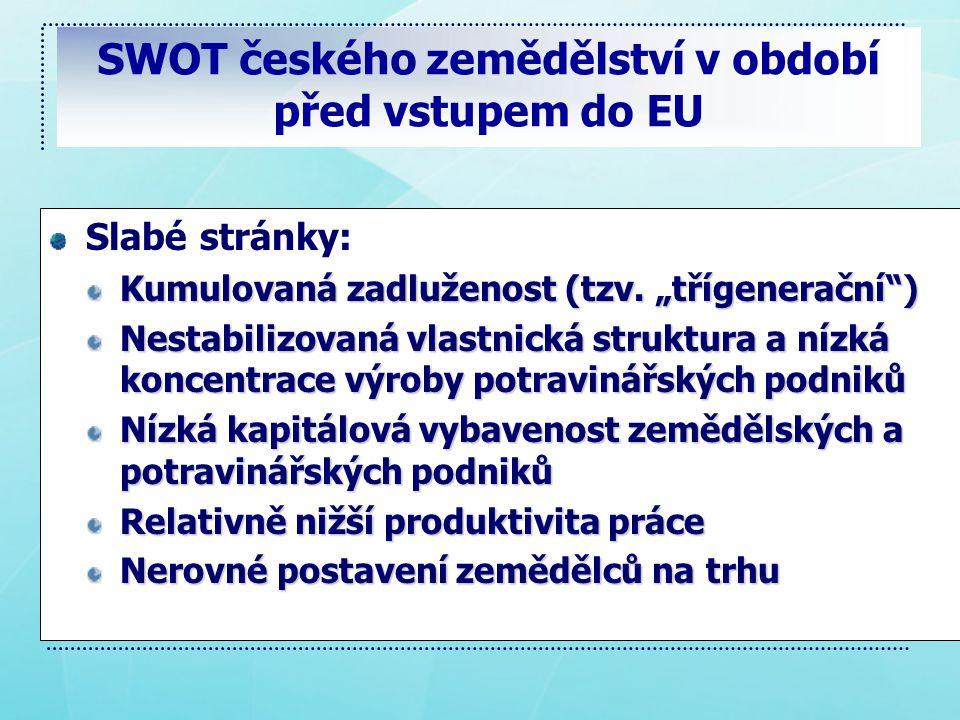 SWOT českého zemědělství v období před vstupem do EU