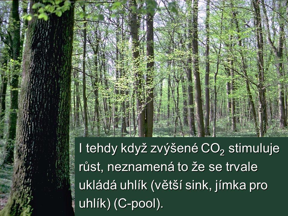 I tehdy když zvýšené CO2 stimuluje růst, neznamená to že se trvale ukládá uhlík (větší sink, jímka pro uhlík) (C-pool).