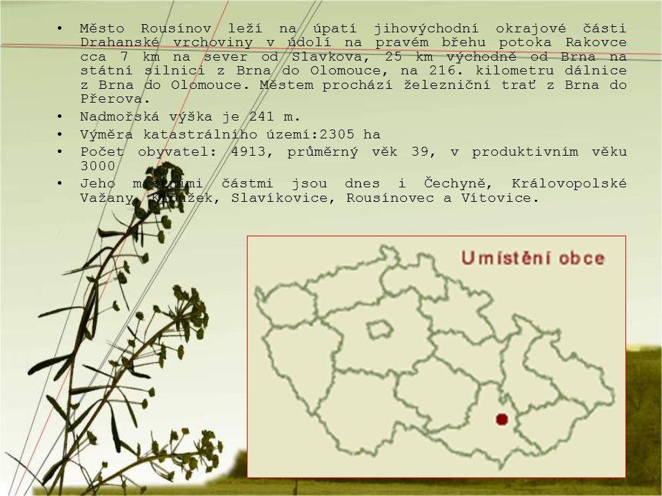 Město Rousínov leží na úpatí jihovýchodní okrajové části Drahanské vrchoviny v údolí na pravém břehu potoka Rakovce cca 7 km na sever od Slavkova, 25 km východně od Brna na státní silnici z Brna do Olomouce, na 216. kilometru dálnice z Brna do Olomouce. Městem prochází železniční trať z Brna do Přerova.