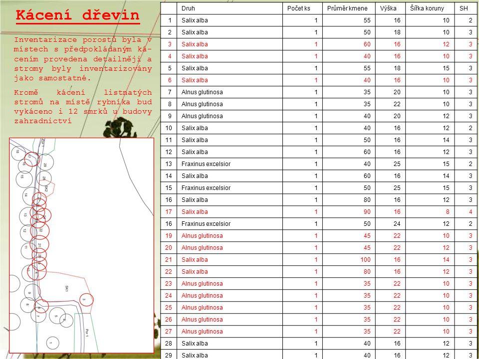 Kácení dřevin Druh. Počet ks. Průměr kmene. Výška. Šířka koruny. SH. 1. Salix alba. 55. 16.