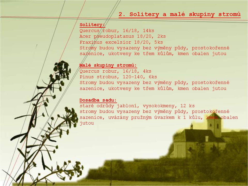2. Solitery a malé skupiny stromů