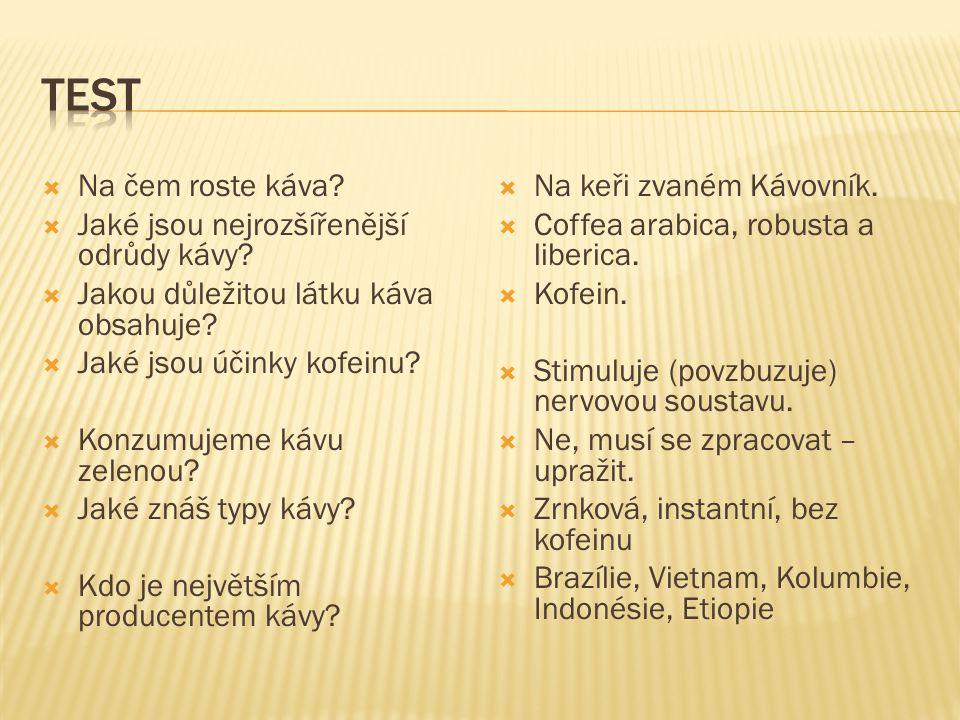 Test Na čem roste káva Jaké jsou nejrozšířenější odrůdy kávy
