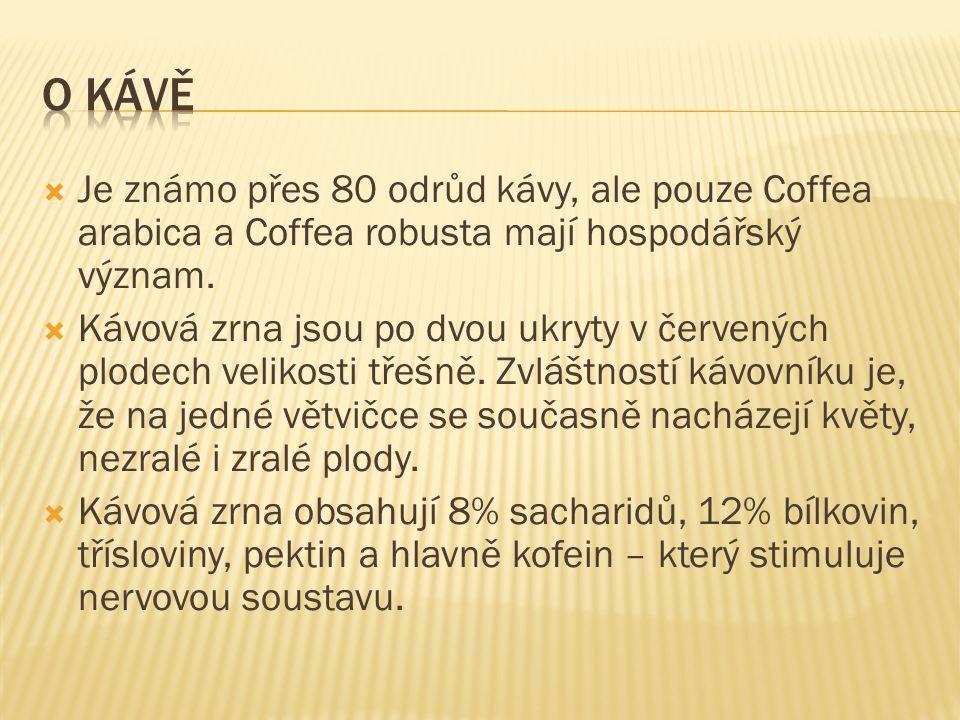 O kávě Je známo přes 80 odrůd kávy, ale pouze Coffea arabica a Coffea robusta mají hospodářský význam.