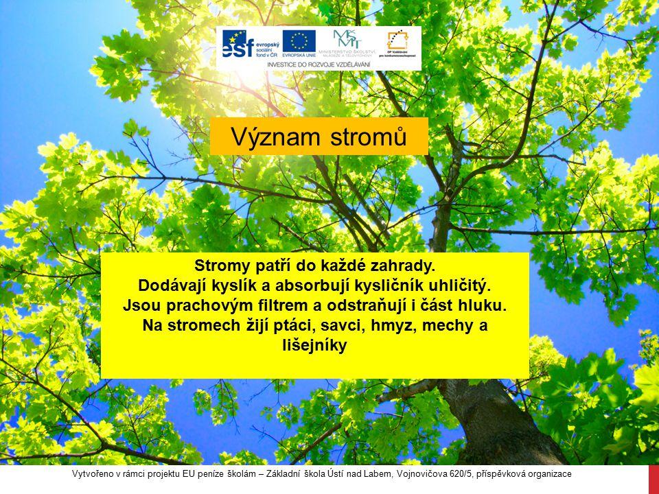 Význam stromů Stromy patří do každé zahrady.
