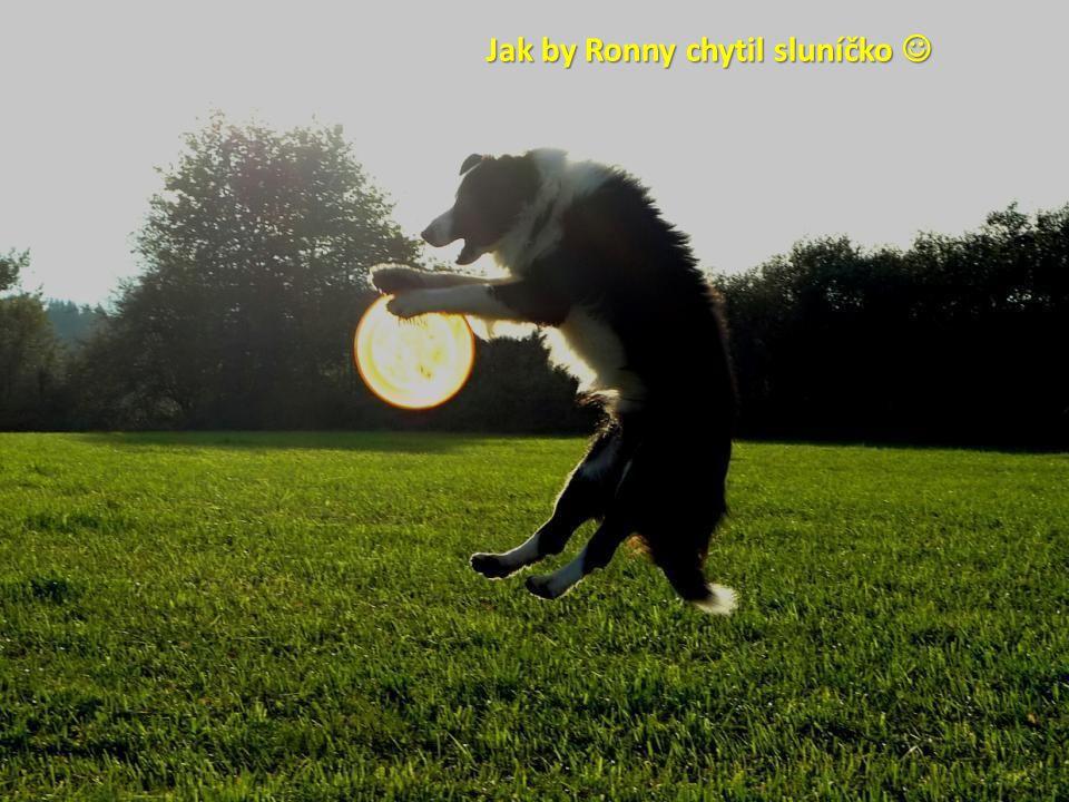 Jak by Ronny chytil sluníčko 