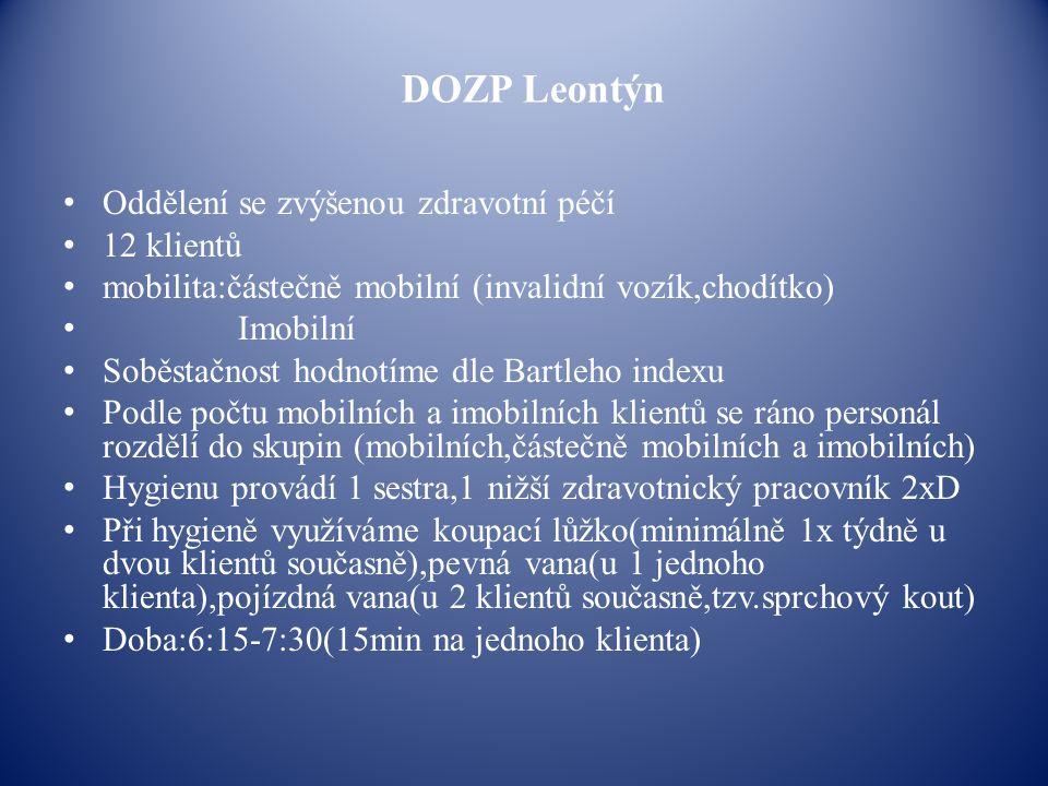 DOZP Leontýn Oddělení se zvýšenou zdravotní péčí 12 klientů