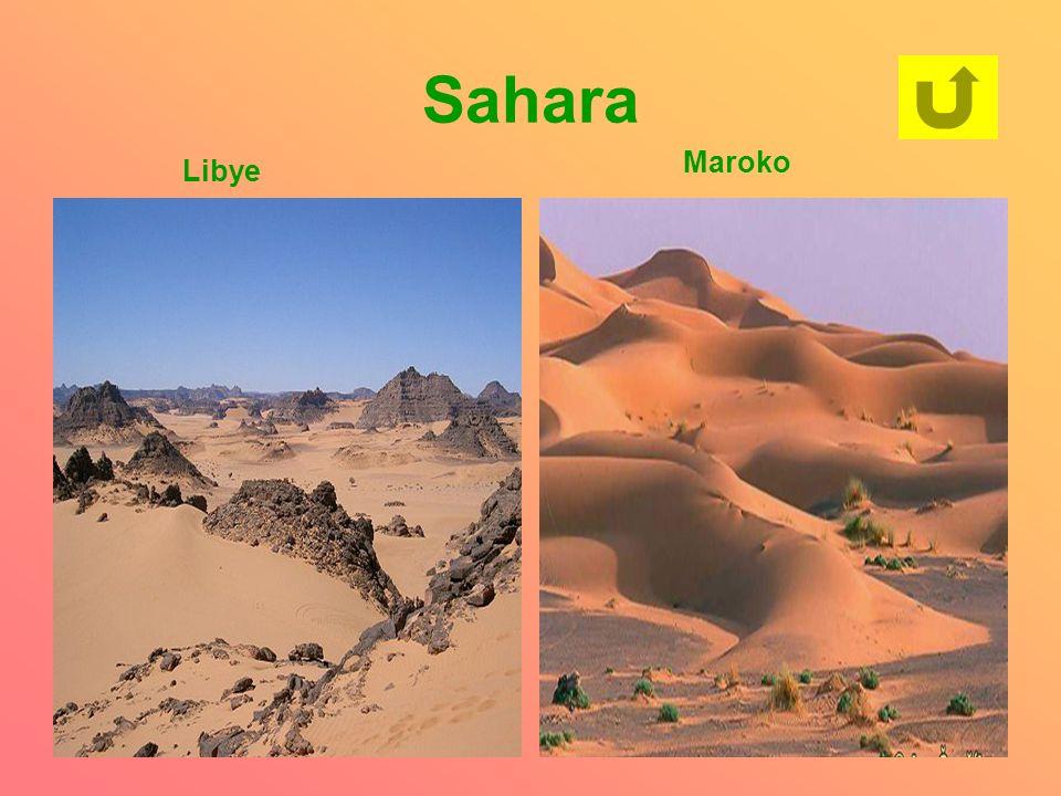 Sahara Maroko Libye