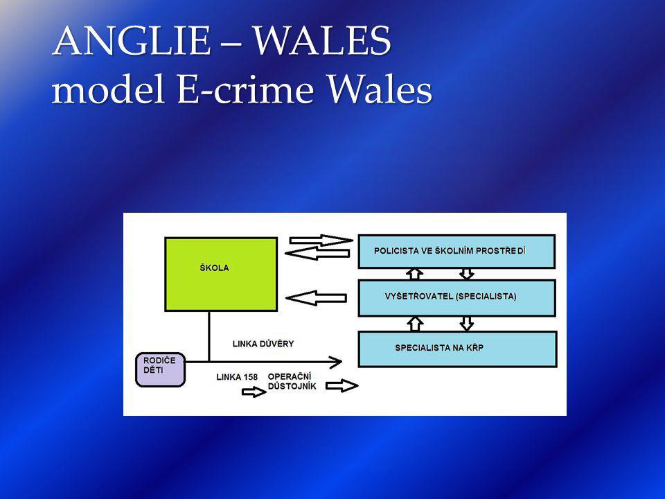 ANGLIE – WALES model E-crime Wales