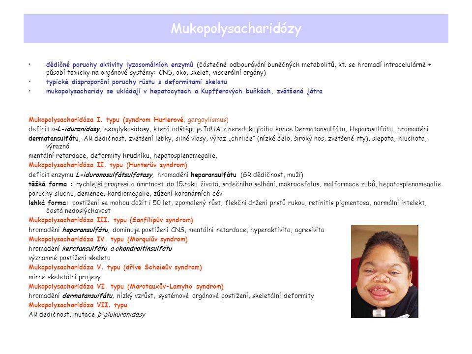 Mukopolysacharidózy