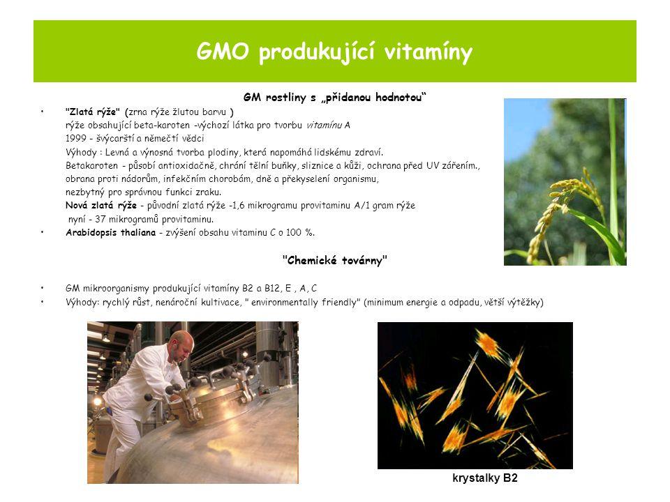 GMO produkující vitamíny