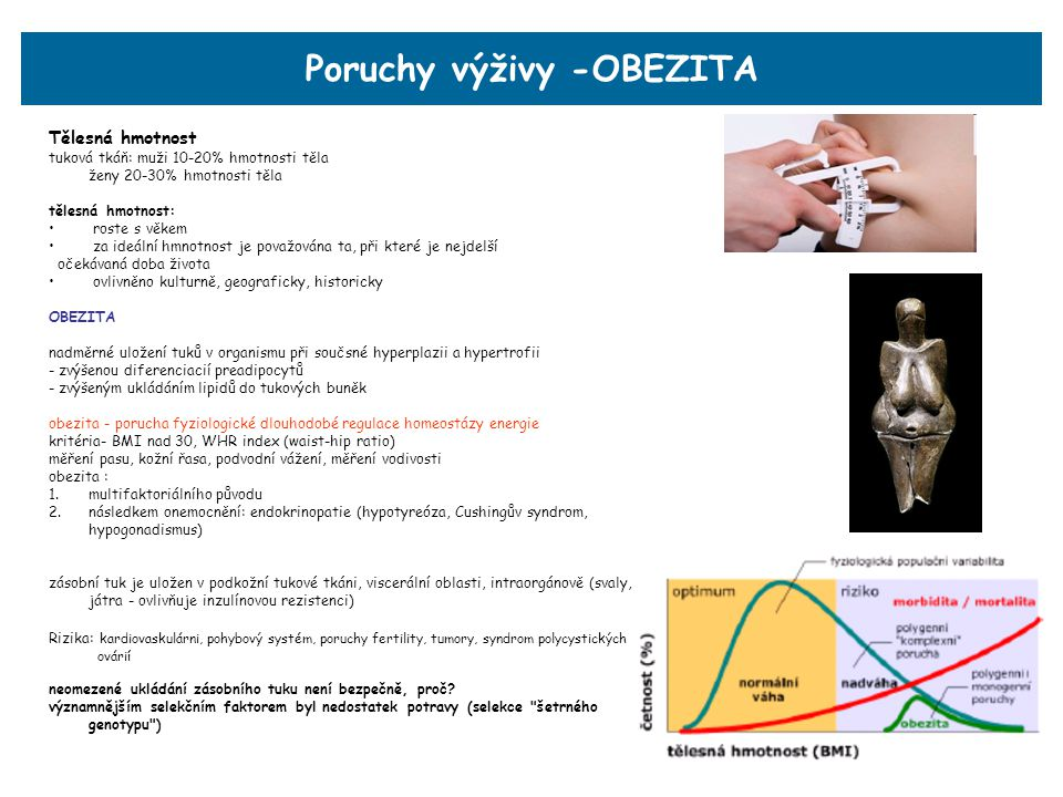 Poruchy výživy -OBEZITA