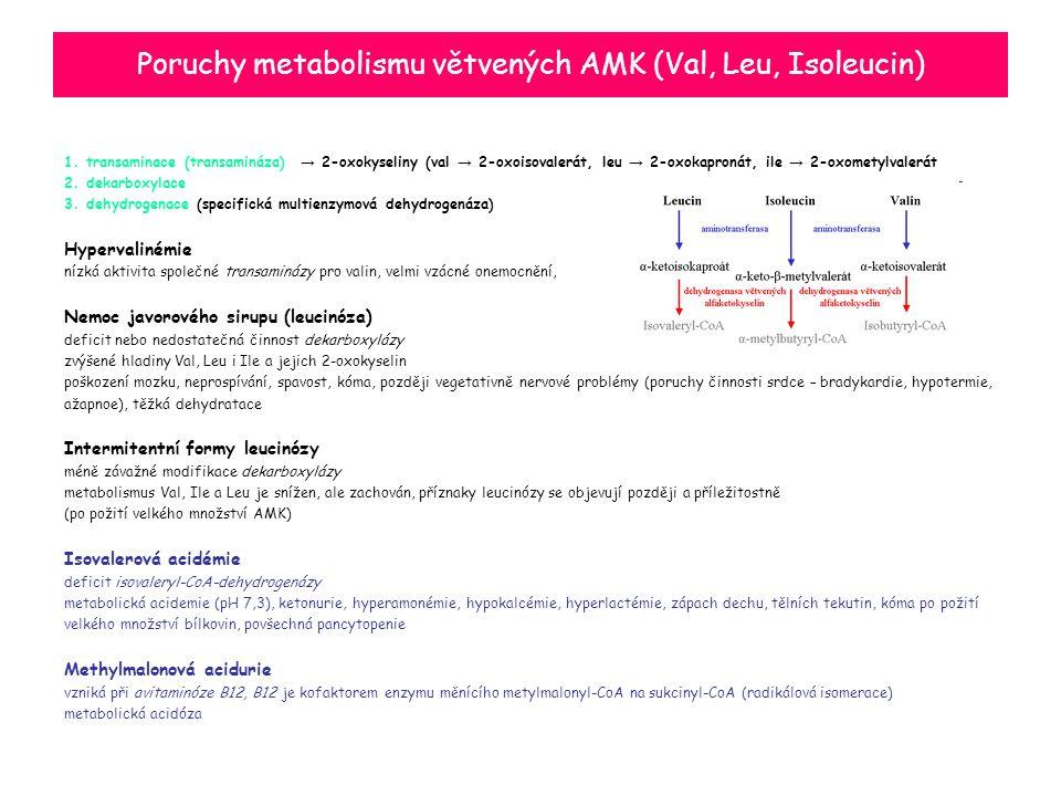 Poruchy metabolismu větvených AMK (Val, Leu, Isoleucin)