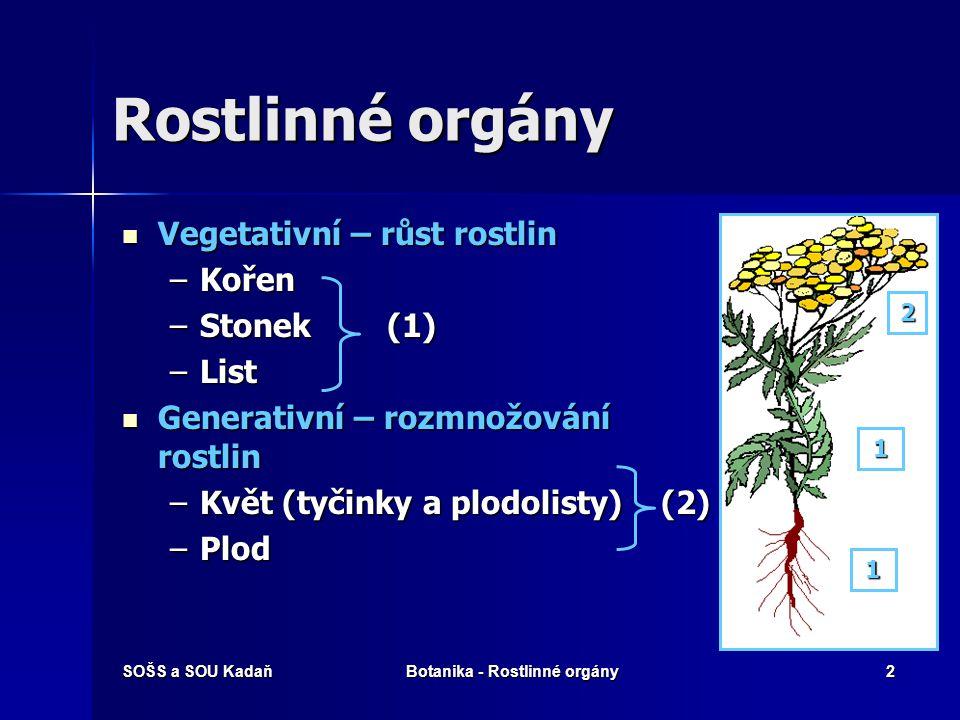 Botanika - Rostlinné orgány