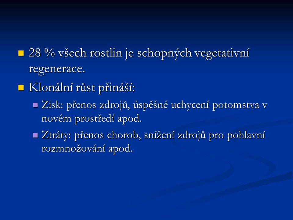 28 % všech rostlin je schopných vegetativní regenerace.