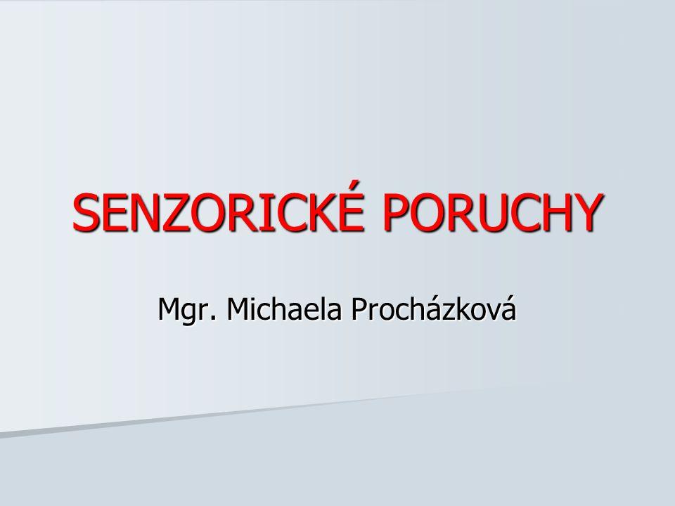 Mgr. Michaela Procházková