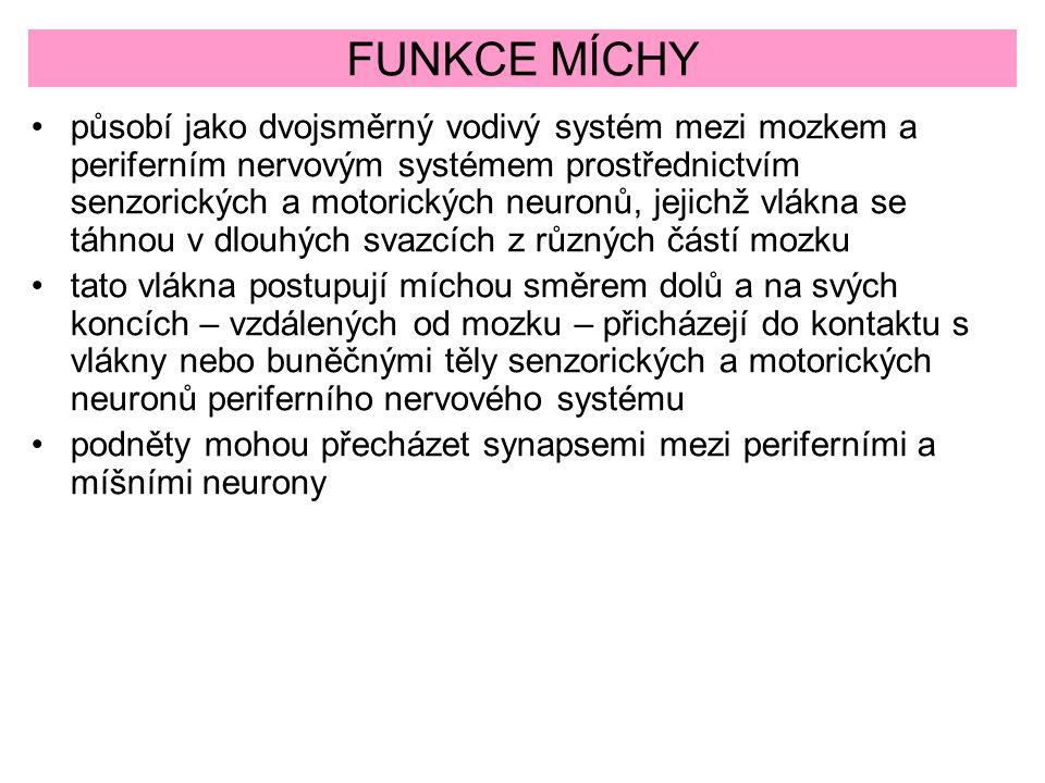 FUNKCE MÍCHY