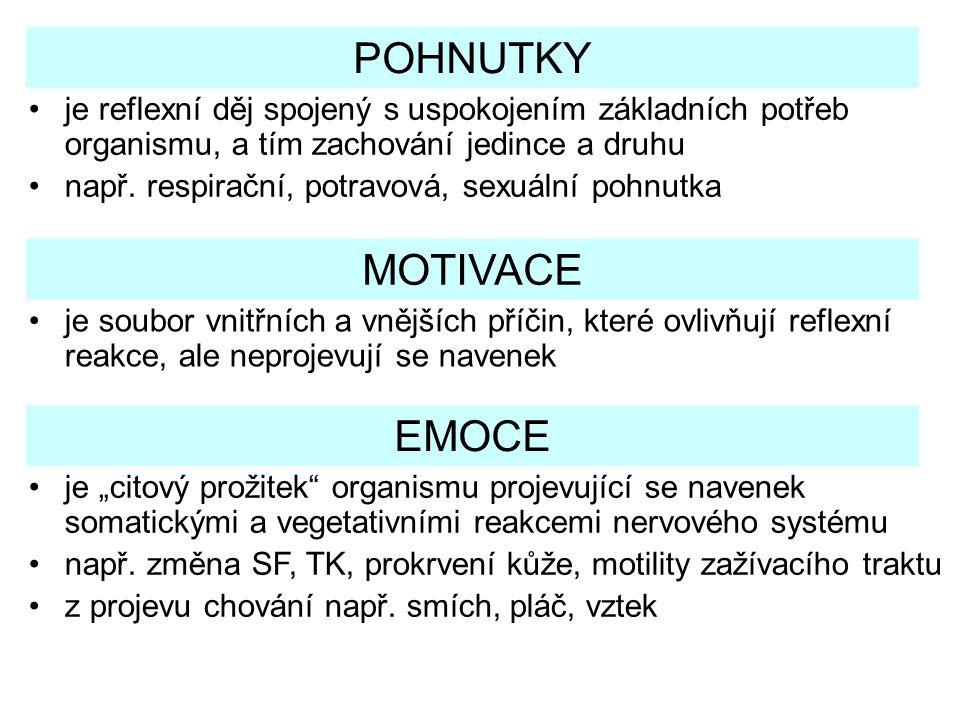 POHNUTKY MOTIVACE EMOCE