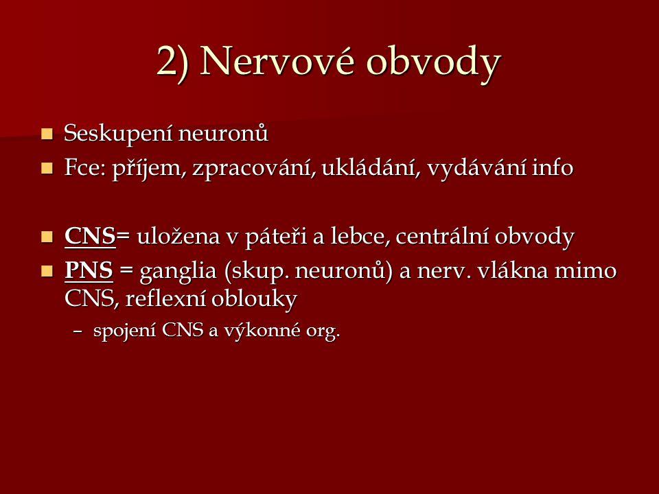 2) Nervové obvody Seskupení neuronů