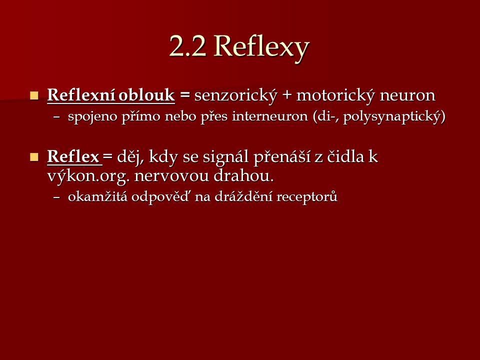 2.2 Reflexy Reflexní oblouk = senzorický + motorický neuron