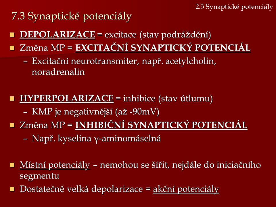 7.3 Synaptické potenciály