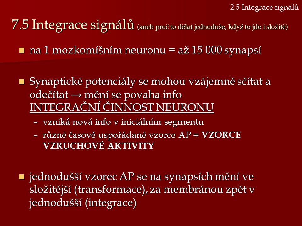 2.5 Integrace signálů 7.5 Integrace signálů (aneb proč to dělat jednoduše, když to jde i složitě) na 1 mozkomíšním neuronu = až 15 000 synapsí.