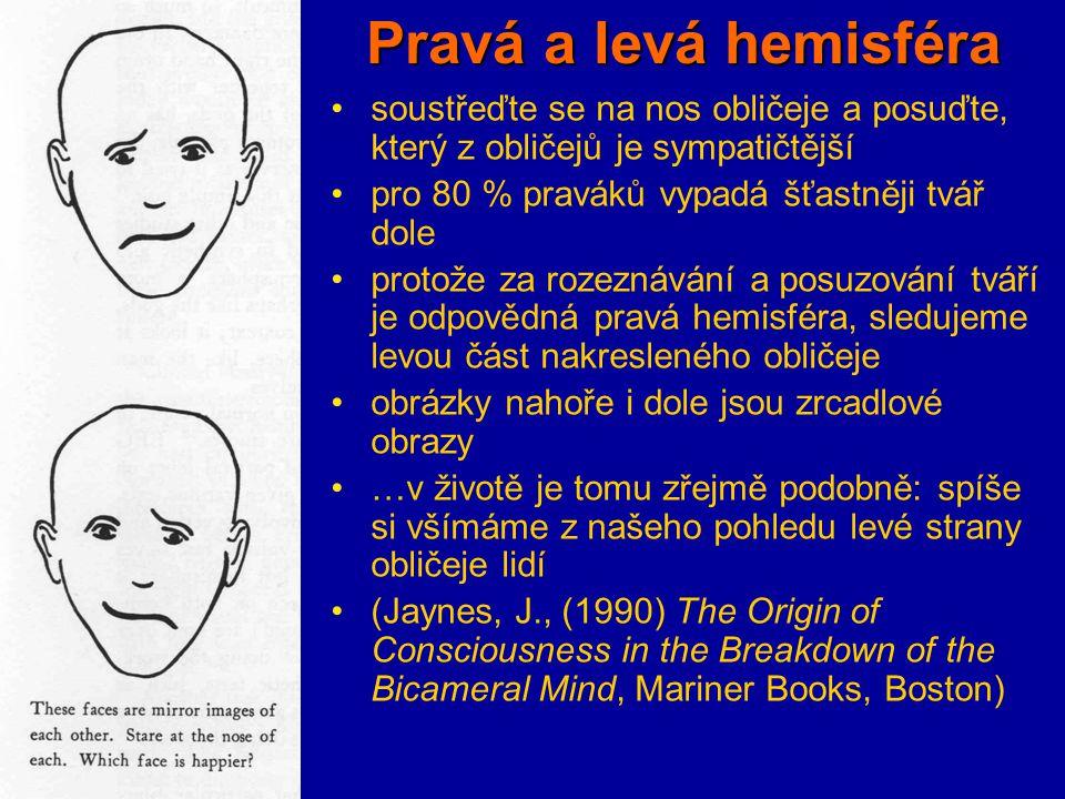 Pravá a levá hemisféra soustřeďte se na nos obličeje a posuďte, který z obličejů je sympatičtější. pro 80 % praváků vypadá šťastněji tvář dole.