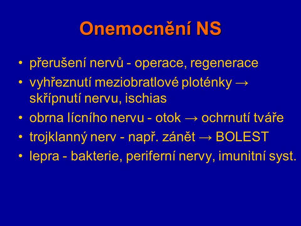 Onemocnění NS přerušení nervů - operace, regenerace