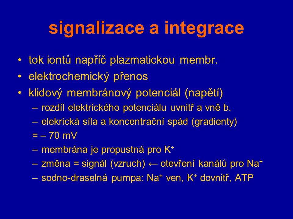 signalizace a integrace