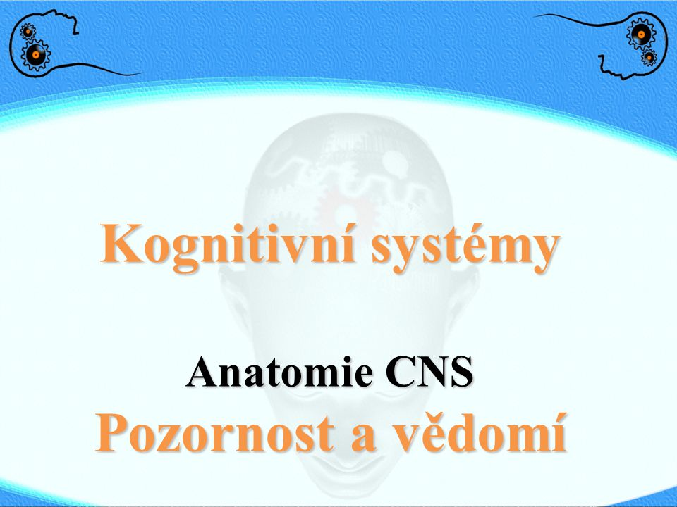 Kognitivní systémy Pozornost a vědomí