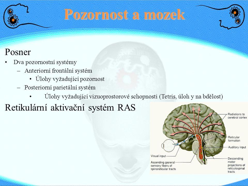 Pozornost a mozek Posner Retikulární aktivační systém RAS