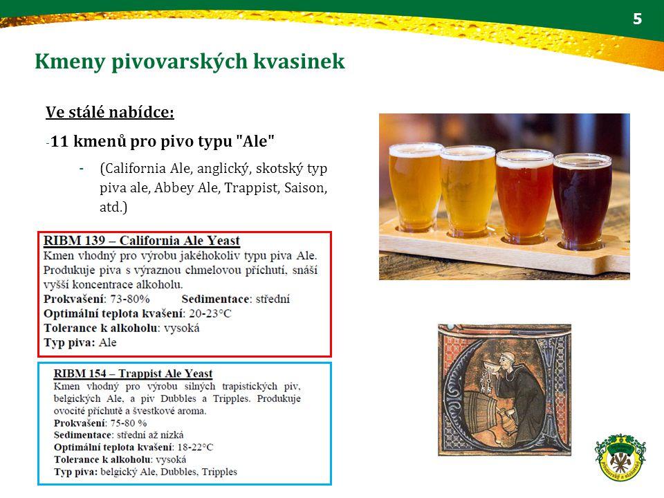 Kmeny pivovarských kvasinek