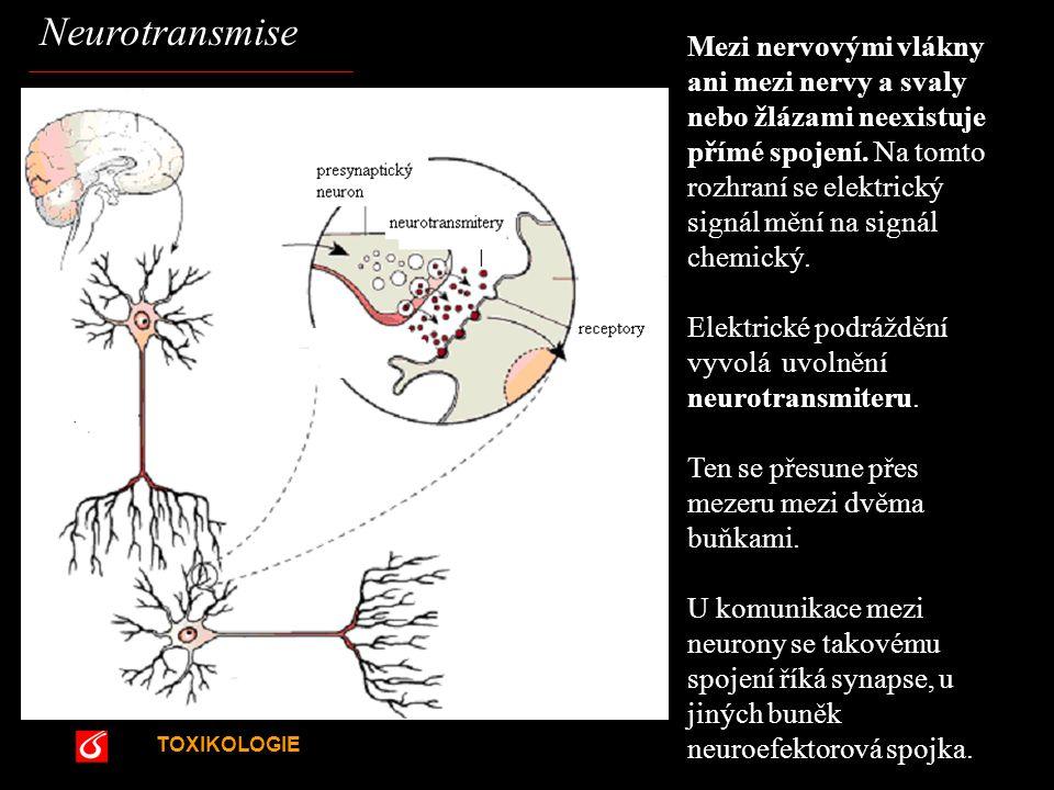 Neurotransmise