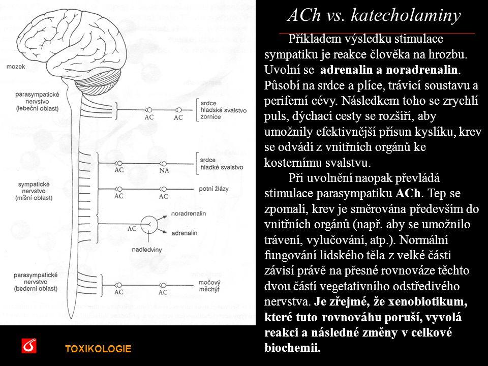 ACh vs. katecholaminy VŠCHT Praha