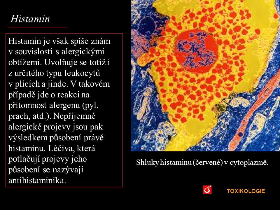 Histamin VŠCHT. Praha.