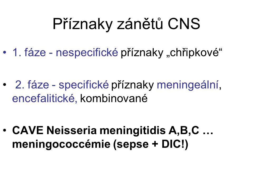 """Příznaky zánětů CNS 1. fáze - nespecifické příznaky """"chřipkové"""