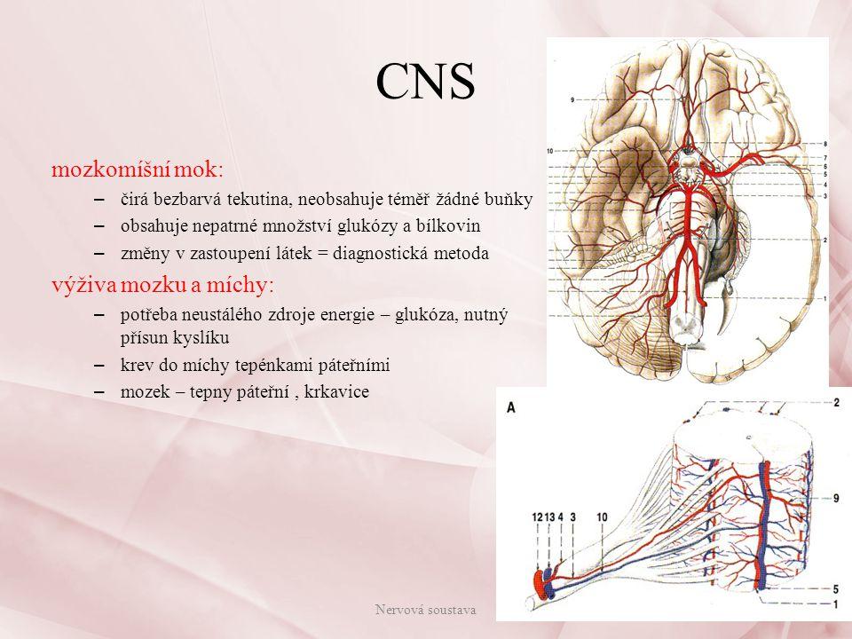 CNS mozkomíšní mok: výživa mozku a míchy: