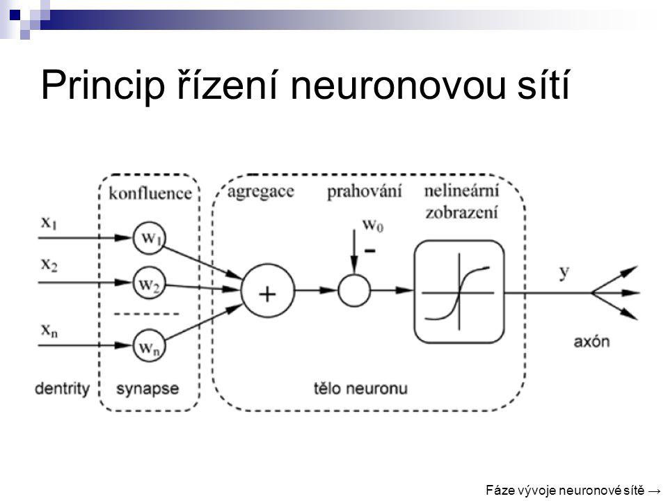 Princip řízení neuronovou sítí