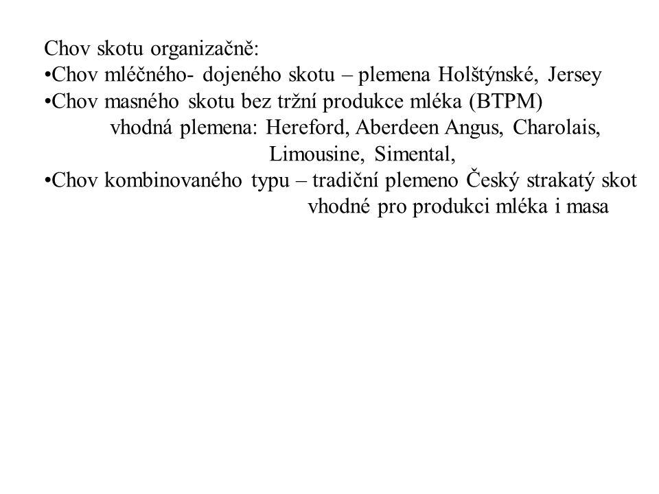 Chov skotu organizačně: