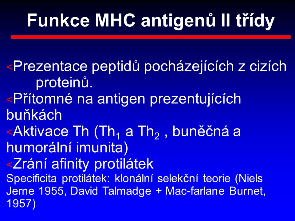 Funkce MHC antigenů II třídy